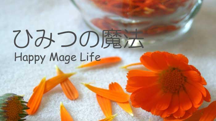happy-mage-life