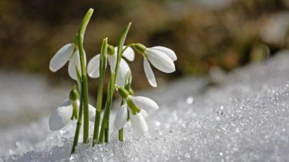 立春。あたらしいエネルギーのお清め